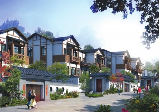 10万新农村住房设计图