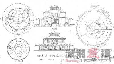 柳树圆形logo