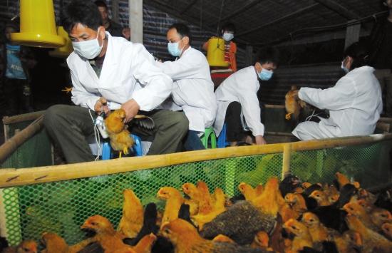 动物疫病预防控制中心的工作