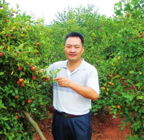 当时油茶平均每亩产茶油仅3-5公斤,年产值才200-300元,群众生产
